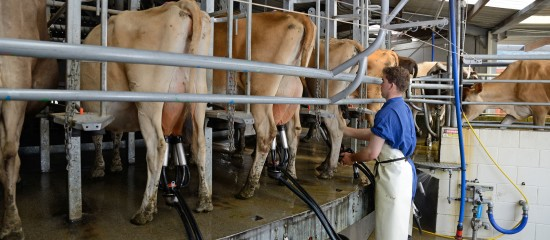 Producteurs de lait: contrat de vente de lait de vache